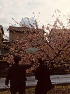 早咲き桜を見に行きました^ ^