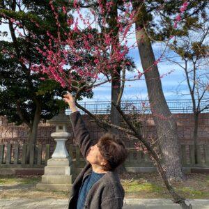 小松天満宮の梅を見てきました^ ^