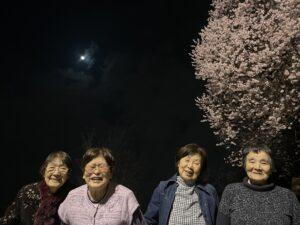 夜桜^ ^